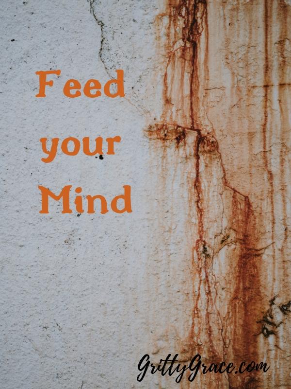 Feed Mind