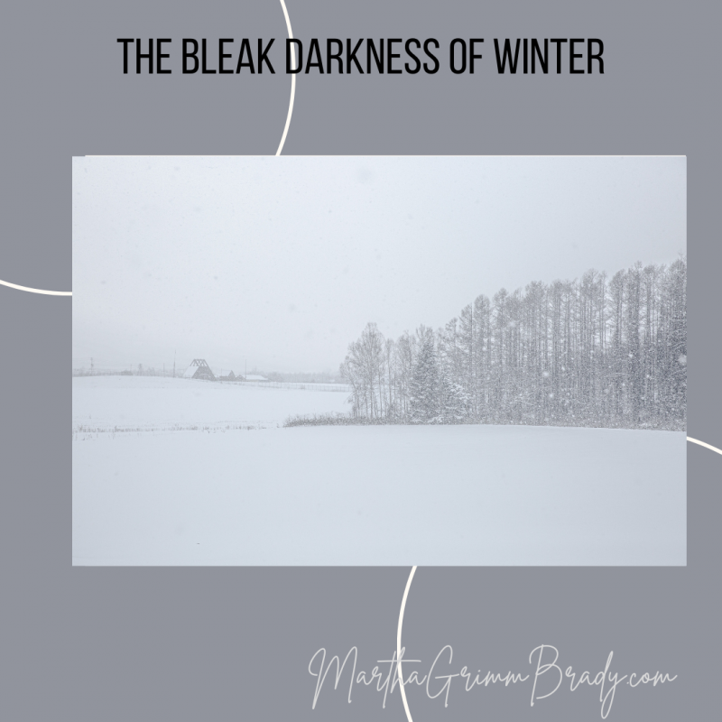 THE BLEAK DARKNESS OF WINTER: I waxed poetic today and yes, I know I'm not a great poet. I'm just acquainted with depression & bleakness...and the Light! #bleakdarkwinter #depression