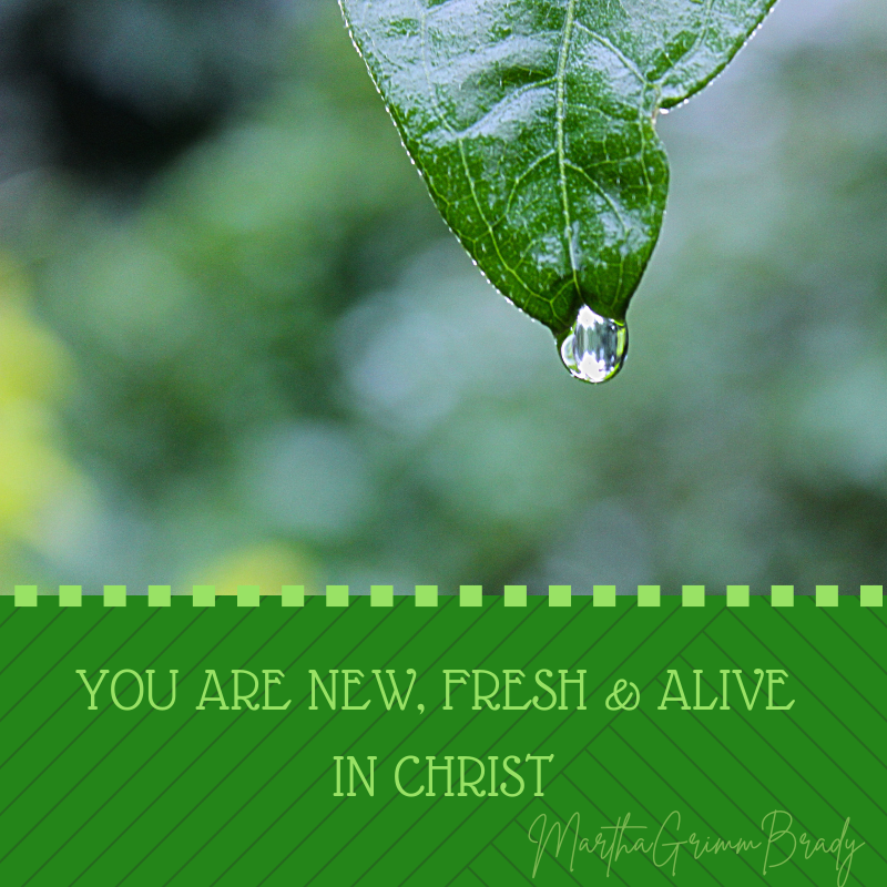 Can you accept by faith that you already are alive in Christ? You are also a new person that GOD made you to be? A gap exists, but that new person is there! #aliveinchrist #newperson