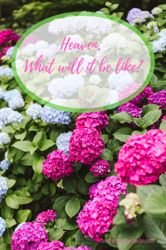 Heaven will be an amazing place! The Bible gives us clues about what it will be like.