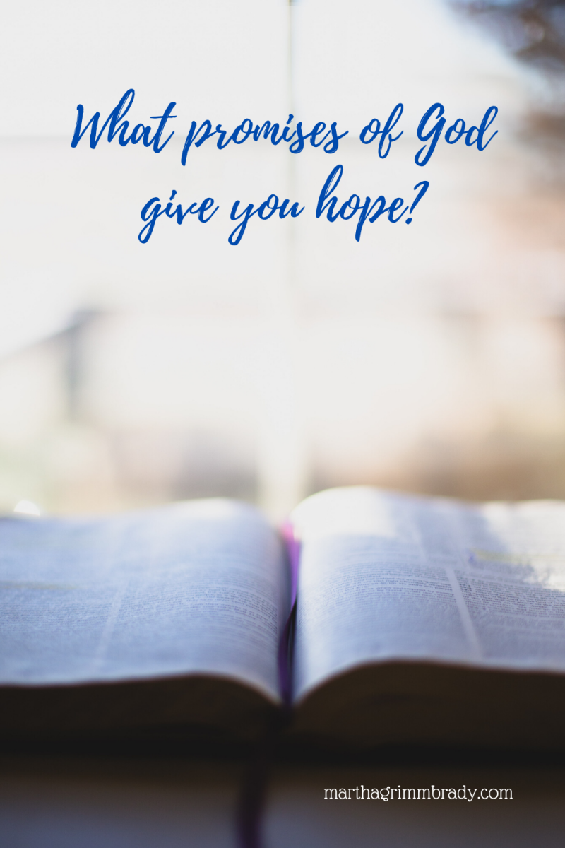 I am sharing a number of promises designed to give you hope.