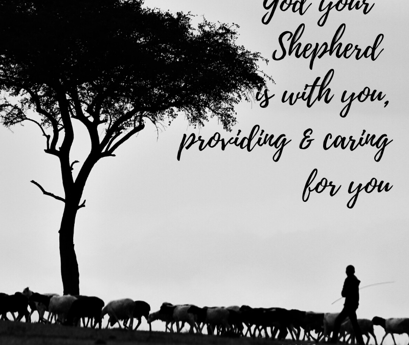 GOD, YOUR SHEPHERD IS WITH YOU, PROVIDING & CARING FOR YOU…