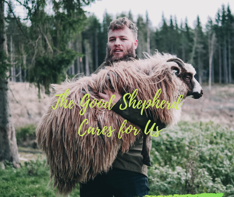 THE GOOD SHEPHERD CARES FOR YOU…