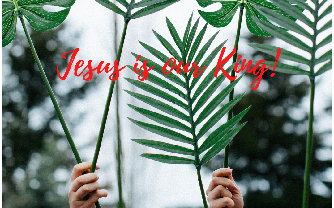 WHAT DOES IT MEAN THAT JESUS IS OUR KING THIS PALM SUNDAY?…
